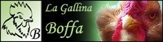 [IMG]http://www.gallinaboffa.com/intro_file/bannerp.jpg[/IMG]